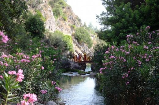 Un tramo del río Algar.