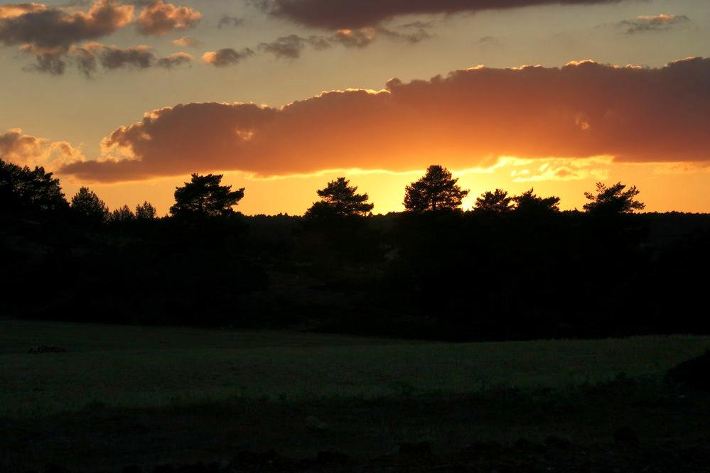 Puesta de sol, prado Cañete (Checa, prov. Guadalajara) Retocada