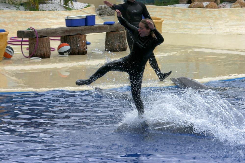 Surfear a lomos de un delfín no parece fácil.
