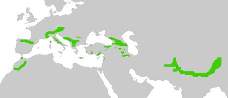 Área de distribución de la chova piquigualda.