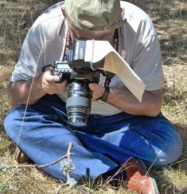 Fotografiando un liquen.