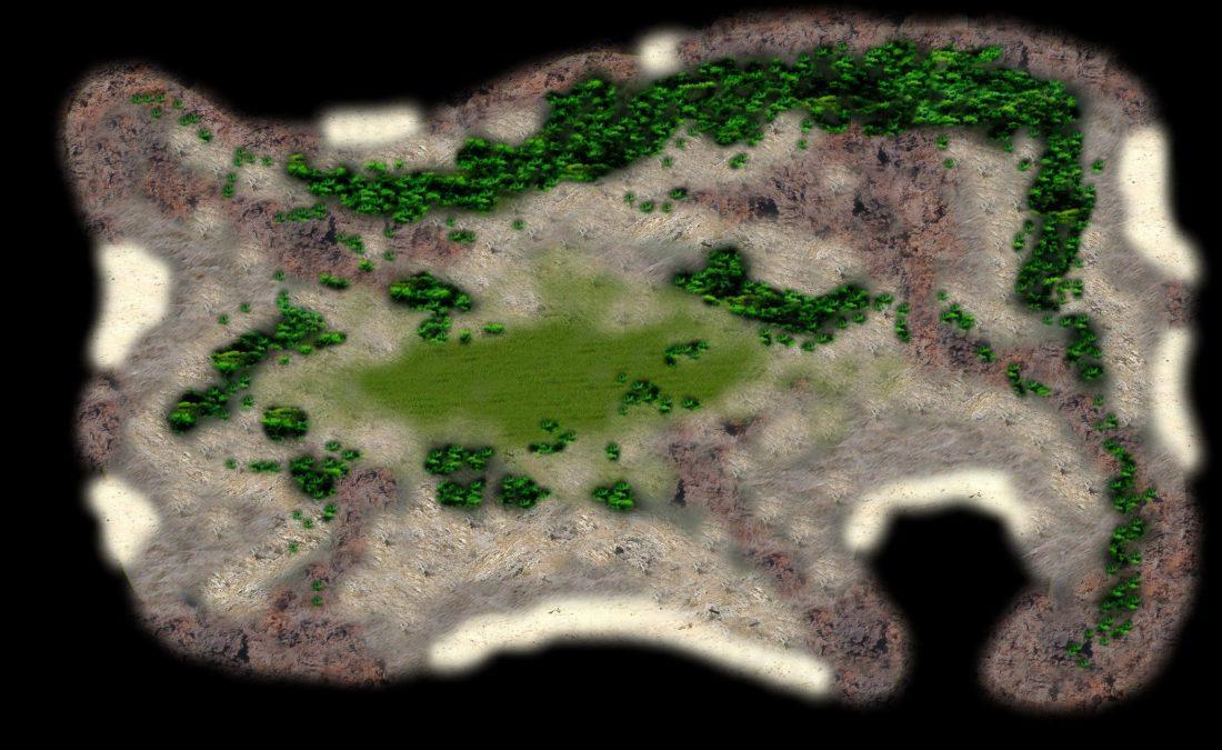 Imagen para la pigmentación de la isla Macaula