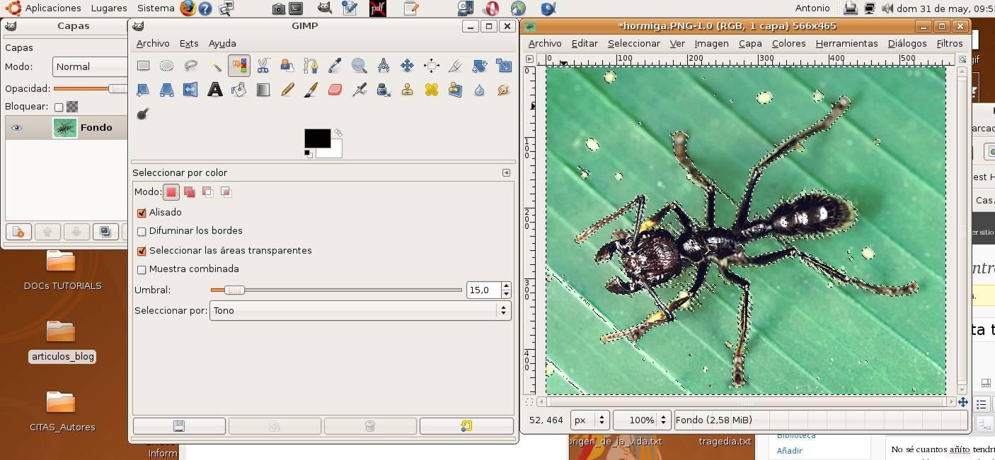 (Fig-3) Selección de la hormiga